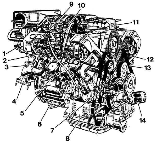 Расположение основных систем 6-цилиндрового двигателя 2,6/ 2,8 л. ДВИГАТЕЛЬ С РАБОЧИМ ОБЪЕМОМ 2,8 Л (30 КЛАПАНОВ) .