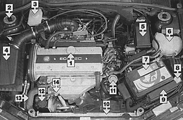 Моторный отсек двигателя 2 л